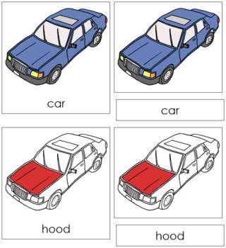 Car Nomenclature Cards (Red)