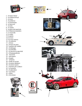 Car Parts Graphic Organizer (worksheet and notes)