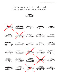 Car Tracking Complex