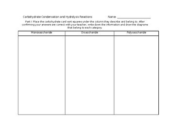 Carbohydrate Card Sort and Worksheet *Editable*