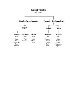 Carbohydrate Family Tree