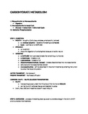 Carbohydrate Metabolism (Biology Review) - Study Guide/Handout