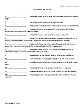 Carbohydrate Metabolism Quiz or Worksheet for Biological Chemistry