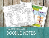 Carbohydrates Doodle Notes