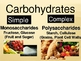 Carbohydrates, Lipids, and Proteins Powerpoint