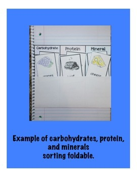 Carbohydrates, Proteins, and Minerals Interactive Sorting Foldable