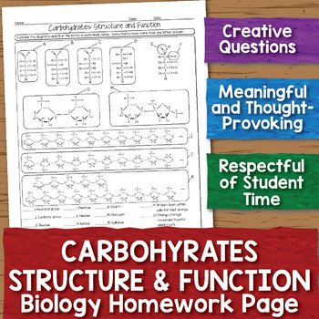 Carbohydrates Structure and Function Homework Worksheet