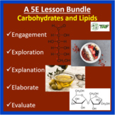 Carbohydrates and Lipids - 5E Lesson Bundle