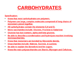 Carbohydrates power point