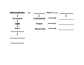 Carbon Based Molecule-Macromolecule Flow Chart