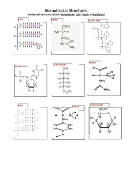 Carbon Compound Structures - Identifying activity