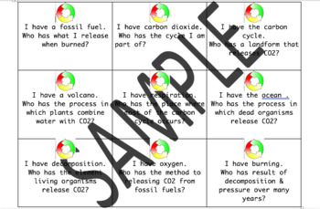 Carbon Cycle Bundle