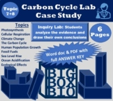 Carbon Cycle Case Study: Interactions of Photosynthesis an