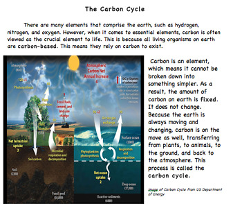 Carbon Cycle Close Reading