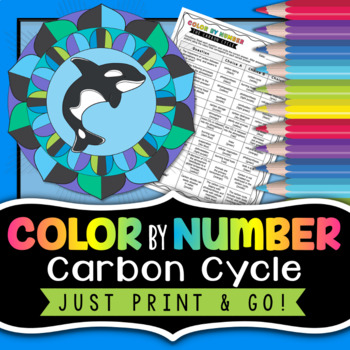 Carbon Cycle - Color By Number