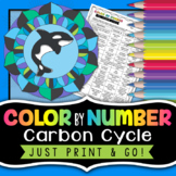 Carbon Cycle Color by Number - Science Color By Number Activity