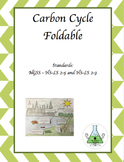 Carbon Cycle Foldable - NGSS