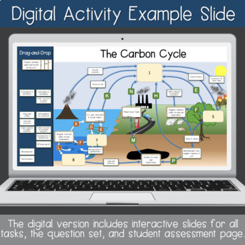 Carbon Cycle Interactive Diagram (Task Cards & Assessment Page Included)