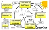 Carbon Cycle Game Manipulative and/or Interactive Notes Page
