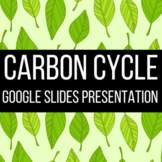 Carbon Cycle Google Slides Presentation