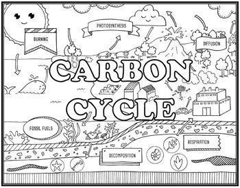 Carbon Cycle Online Tutorial & Carbon Cycle Seek and Find Doodle Page Combo
