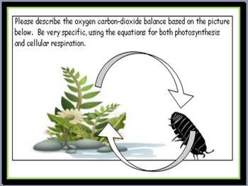 Carbon Cycle Lesson, Photosynthesis and Cell Respiration