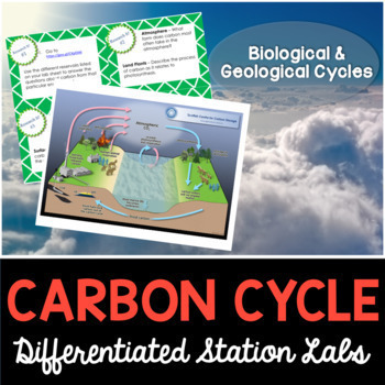 Carbon Cycle Student-Led Station Lab