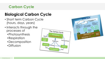 Carbon Cycle - Supplemental Lesson - No Lab