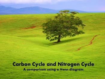 Carbon Cycle vs. Nitrogen Cycle
