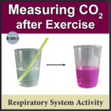 Respiratory System: Measuring Carbon Dioxide in Breath