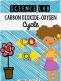 Carbon Dioxide-Oxygen Cycle (Station Rotation, foldable, passport)