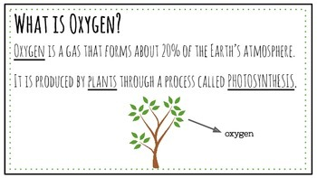 Carbon Dioxide- Oxygen Cycle and Photosynthesis Powerpoint & Notes