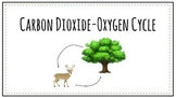 Carbon Dioxide- Oxygen Cycle and Photosynthesis Powerpoint