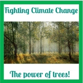 Carbon Futures: How trees can help fight climate change