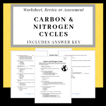 Carbon And Nitrogen Cycles Teaching Resources Teachers Pay Teachers