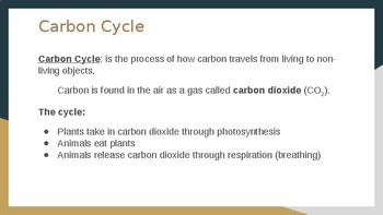Carbon, Nitrogen and Phosphorus Cycles PPT