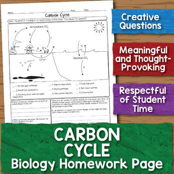 Carbon Oxygen Cycle Biology Homework Worksheet