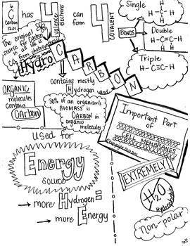 Carbon Sketch Notes Doodle Notes W/Teacher Guide & Student Note