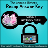 Carbon and Nitrogen Cycle Recap Answer KEY by The Amoeba Sisters