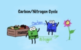 Carbon and Nitrogen Cycles - Amoeba Sisters
