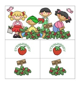 Card Matching- Strawberry Strawberry
