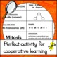 Card Sort - Mitosis vs Meiosis