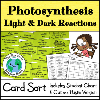 Card Sort - Photosynthesis