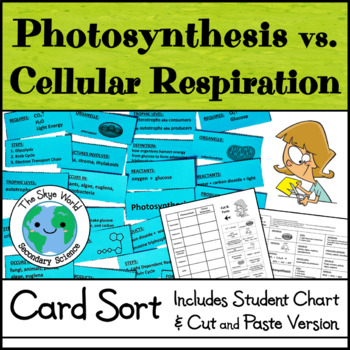 Card Sort - Photosynthesis vs. Cellular Respiration
