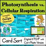 Card Sort Activity - Photosynthesis vs. Cellular Respiration