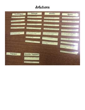 Card Sort - Properties of Quadrilaterals