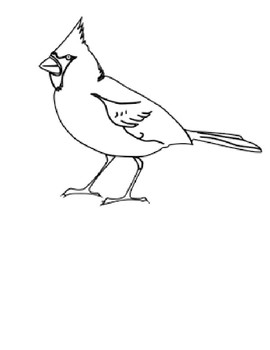 Cardinal Article and Coloring Worksheet