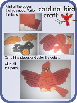 Cardinal Bird facts