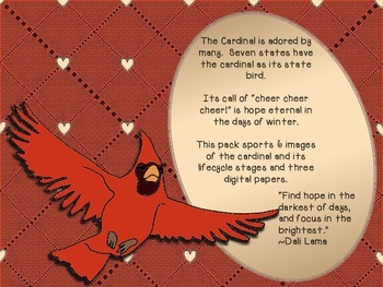 Cardinal Life Cycle Clip Art Pack