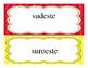 Cardinal and Intermediate Directions in Spanish. FREEBIE!